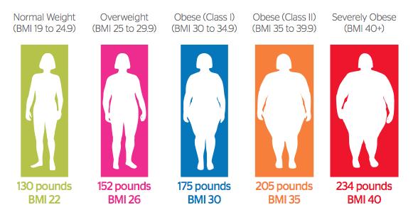 what-obesity-looks-like-588x306bmi
