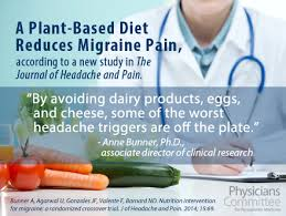 plant based diet and headaches
